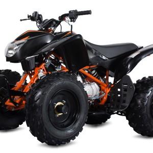 Raging Bull 125 ATV