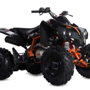 Raging Bull 250 ATV