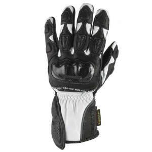 Rayven Fury Gloves