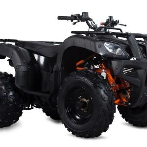 Jackal 150 ATV